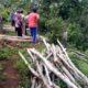 Mantan Kades Sumawe Jalani Sidang Perdana di PN Kepanjen, Terkait Pencurian Kayu Jati Tanah Bengkok
