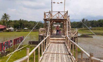 Wisata Dewi Sri, Wisata Destinasi Edukasi Padi